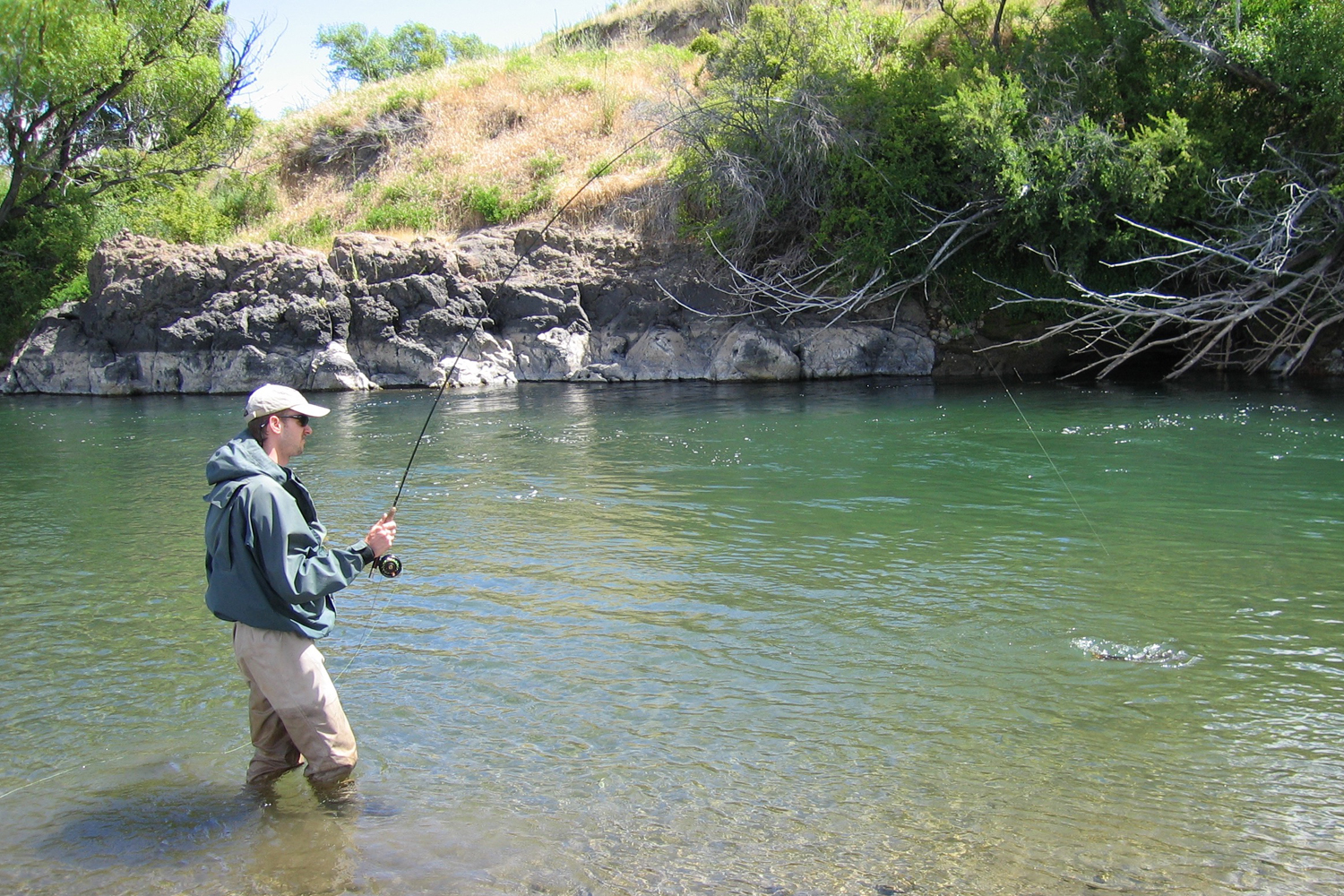 Fighting trout on the Rio Collon Curra